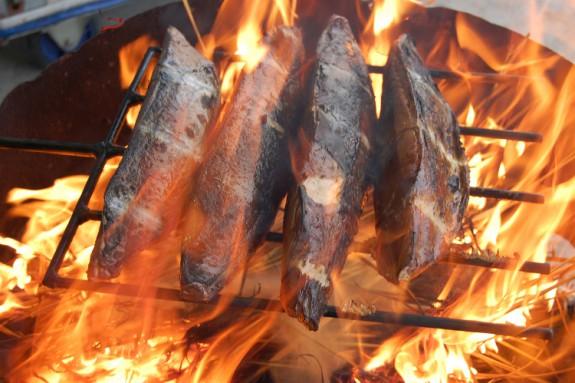 カツオ藁焼き1